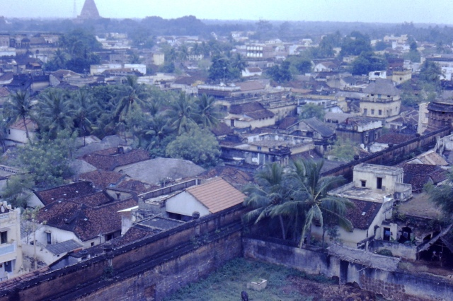 Harem View - 2