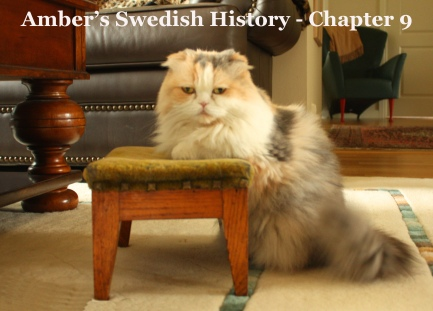Amber History 9