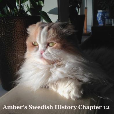 Amber history 12
