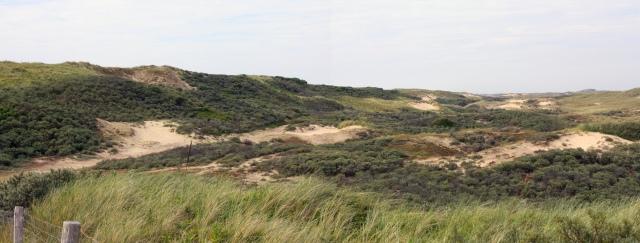 Dune Merge good Fix