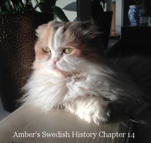 Amber Hist 14