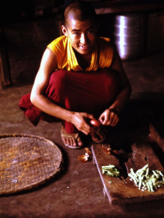 Boda Cook Monk