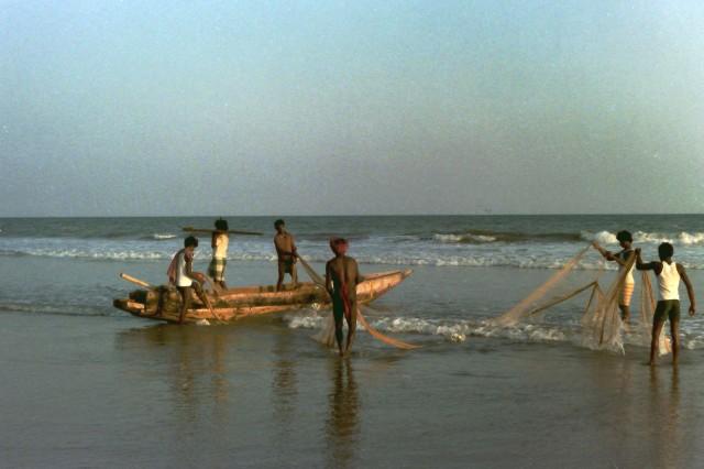 Puri Fishers 2