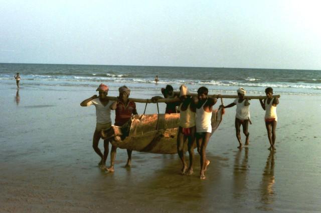 Puri Fishers 3